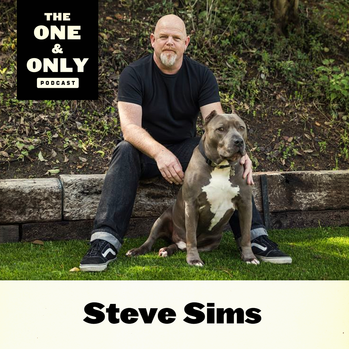 Steve Sims on The One & Only with Mark Shapiro